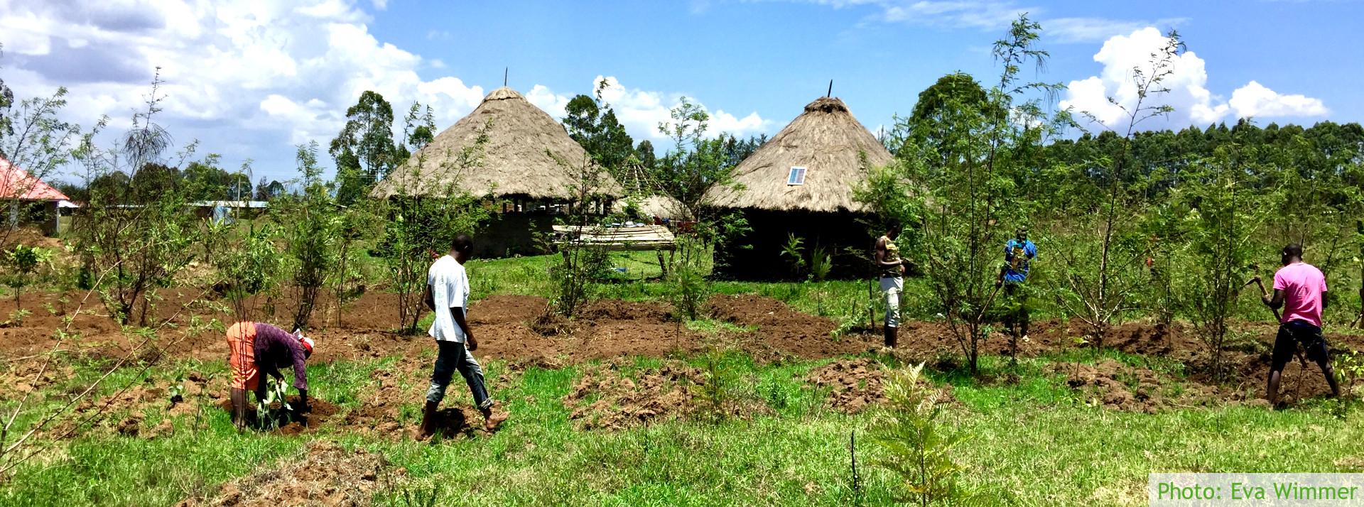Upendo Garden | Upendo-Garten